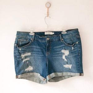 Torrid Distressed Rolled Hem Jean Shorts 20